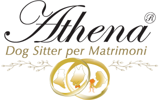 Athena_Dog_Sitter_per_Matrimoni.png