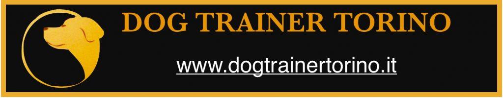 Dog_Trainer_Torino.jpeg
