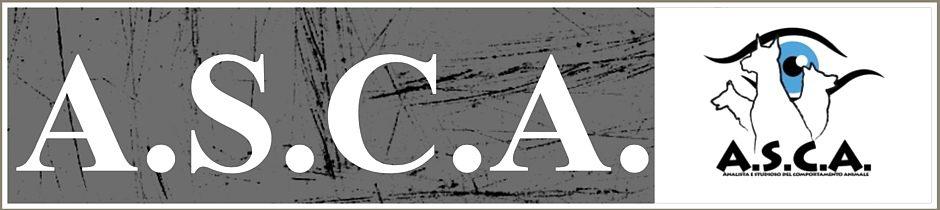 A.S.C.A.-asd-Addestramento-Cani-Torino.jpg
