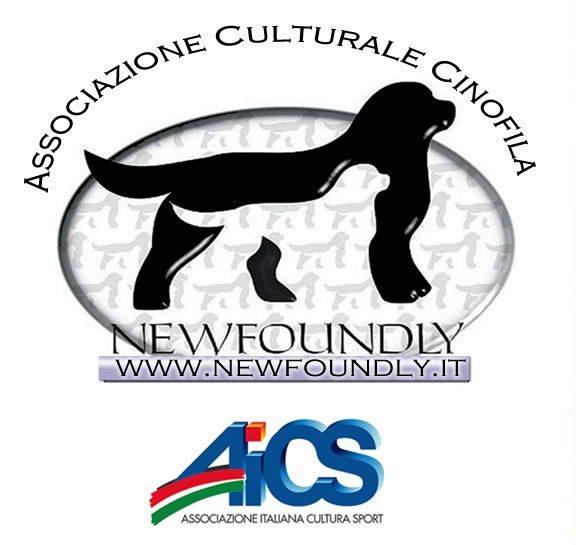 Newoundly_AiCS.jpg