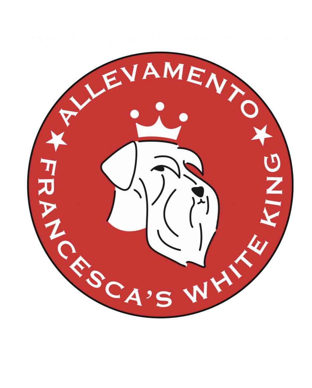 white-king-allevamento-schnauzer-nani-bianchi.jpeg