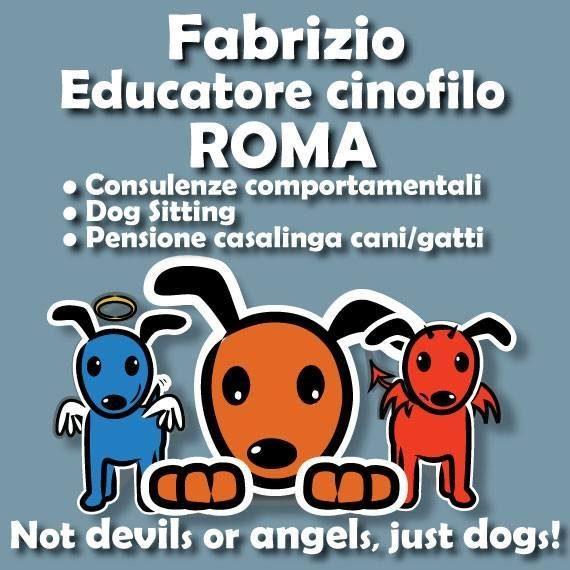 Educatore_Cinofilo_Dog_sitter_Pensione_casalinga_Roma.jpg