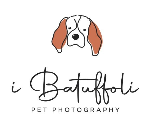 i-batuffoli-pet-photography.jpg