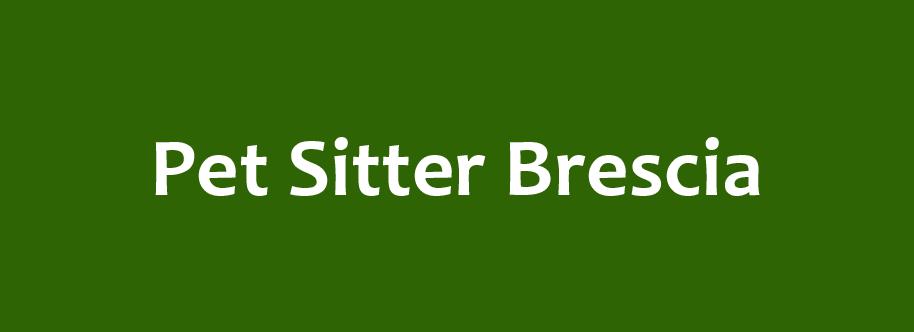 pet sitter brescia.png