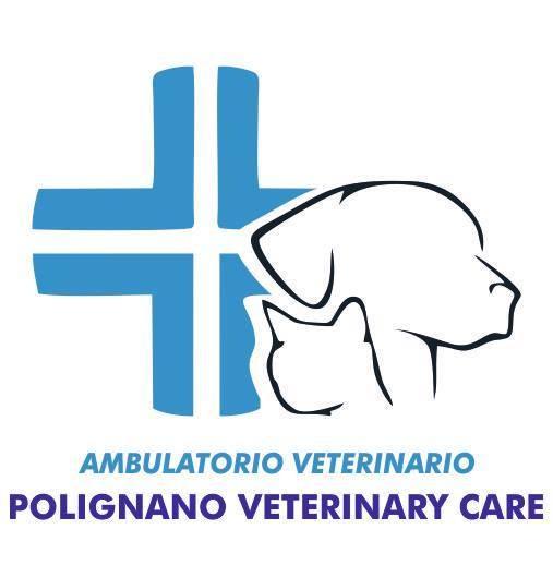 AMBULATORIO-POLIGNANO-VETERINARY-CARE.jpg