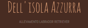 Allevamento_Labrador_Retriever_Dell_isola_Azzurra.png
