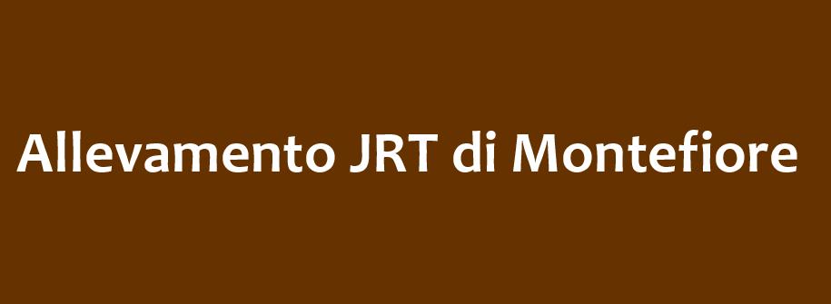jrt logo.png