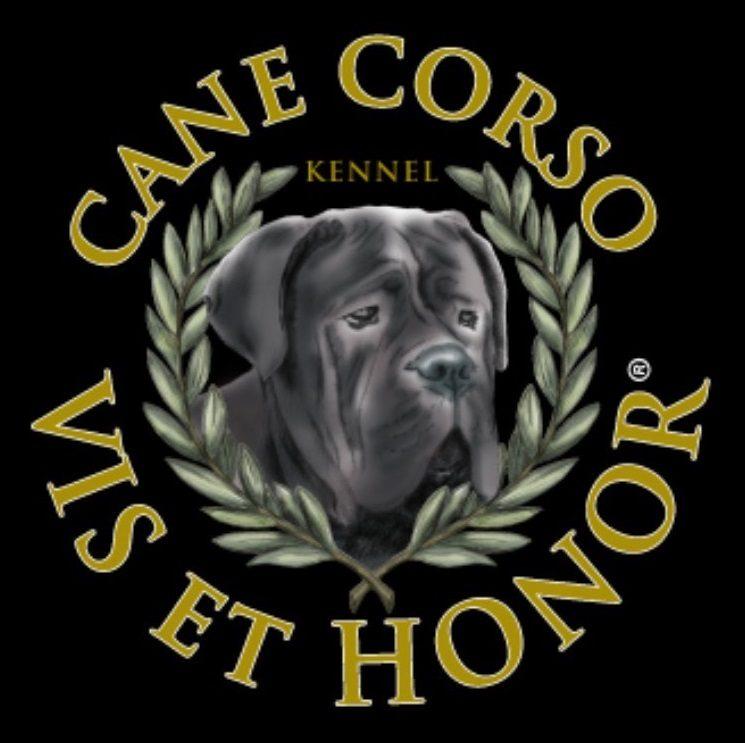 VIS_et_HONOR_Allevamento_del_Cane_Corso.jpg