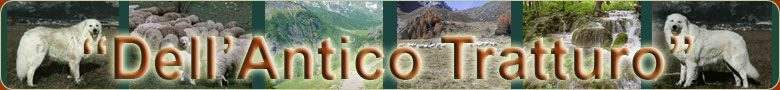 Dell'Antico_Tratturo_Allevamento_Pastore_Maremmano-Abruzzese.jpg