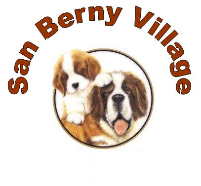 SAN_BERNY_VILLAGE_Allevamento_San_Bernardo.png