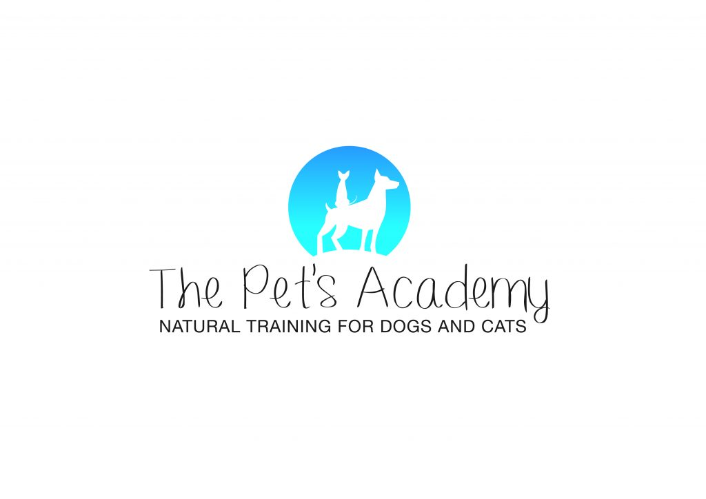 The_Pet's_Academy.jpg