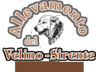 Velino-Sirente_Allevamento_del_Pastore_Maremmano-Abruzzese.png