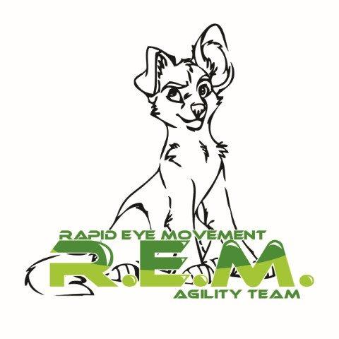 rem-agility-team.jpg