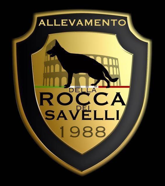 ALLEVAMENTO_DEL_PASTORE_TEDESCO_DELLA_ROCCA_DEI_SAVELLI.jpg