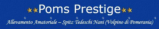 ALLEVAMENTO_POMSPRESTIGE_per_la_selezione_dello_SPITZ_TEDESCO_NANO_(Pomeranians)_2.jpg