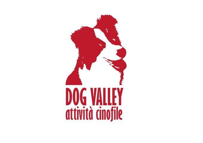dog-valley-attivita-cinofile-tradate.jpg