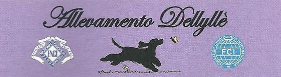 Allevamento-Cocker-Spaniel-Inglese-Dellyllè.jpg