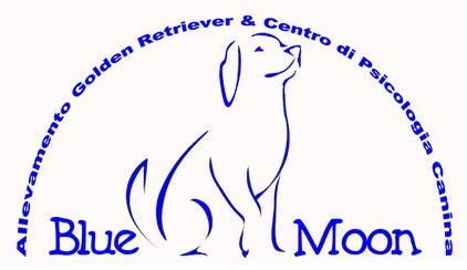 Allevamento_Golden_Retriever_Blue_Moon.png
