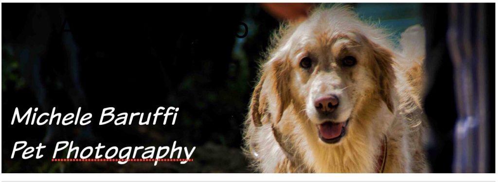 Michele_Baruffi_Pet_Photography.JPG.jpg