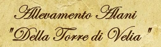 Allevamento_Alani_Della_Torre_di_Velia.png