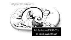 Logo Sweet Lion.jpg