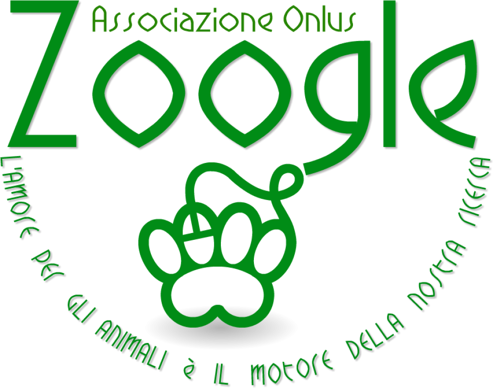 Associazione_Zoogle_Onlus.png