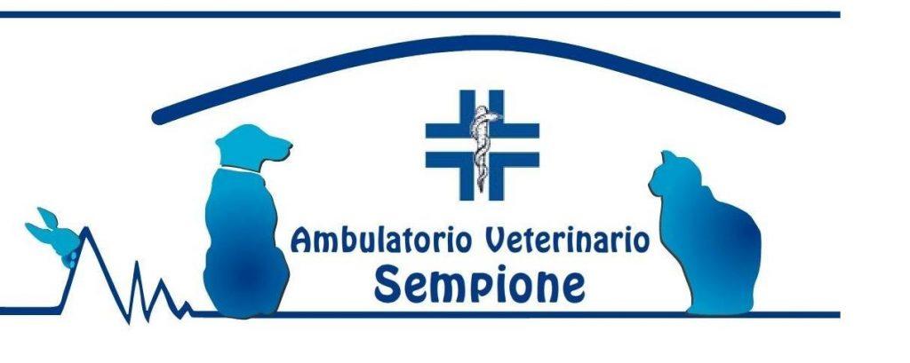 Ambulatorio_Veterinario_Sempione_Torino.jpg