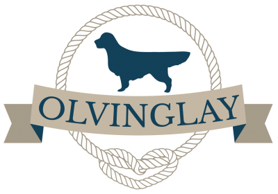 Allevamento-Golden-Retriever-Olvinglay.png