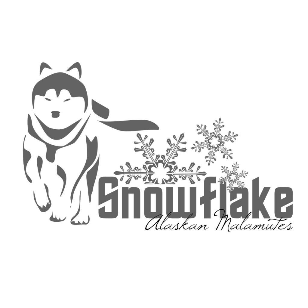 Snowflake Malamutes