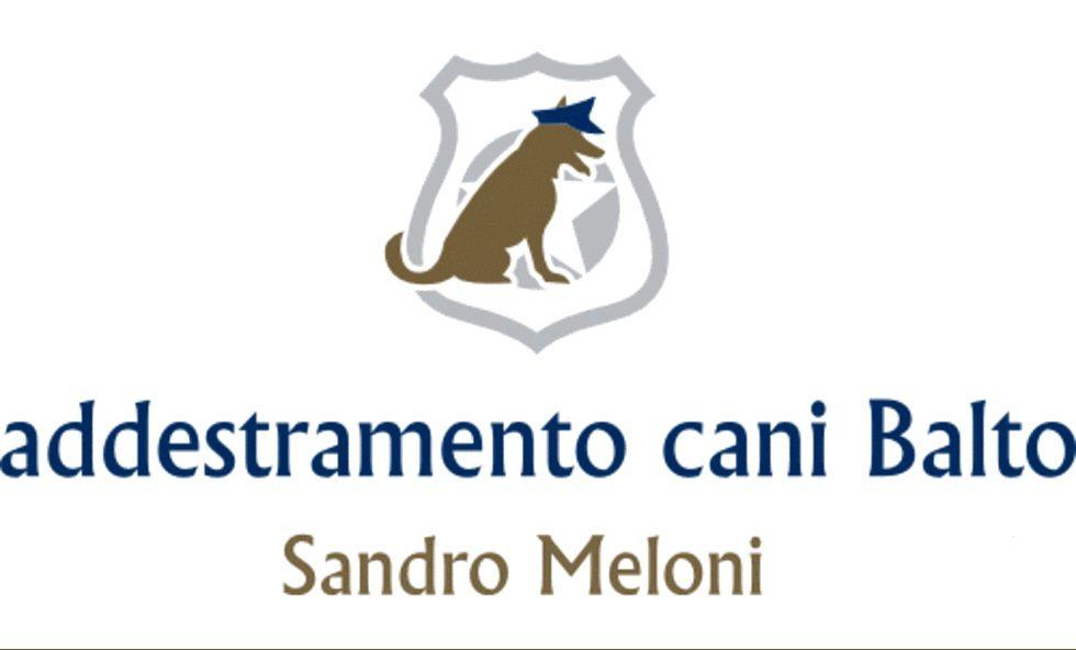 Centro_Addestramento_Cani_Sandro_Meloni.jpg