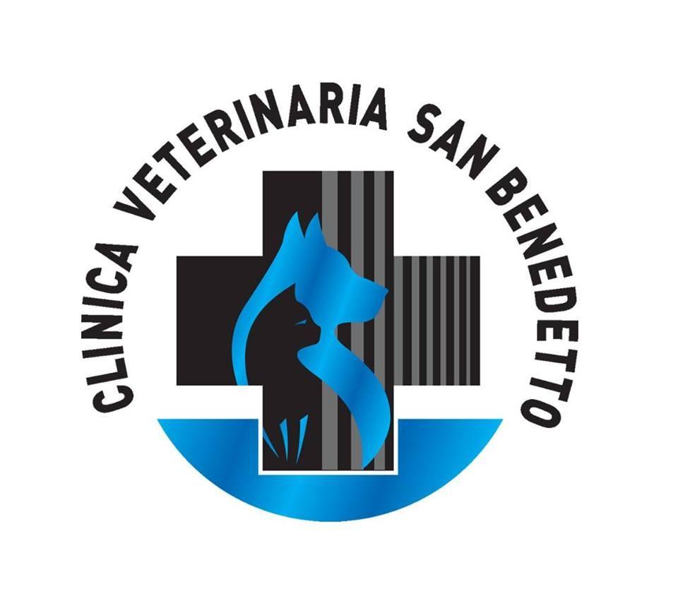 Clinica-Veterinaria-San-Benedetto-a-Forlì.jpg