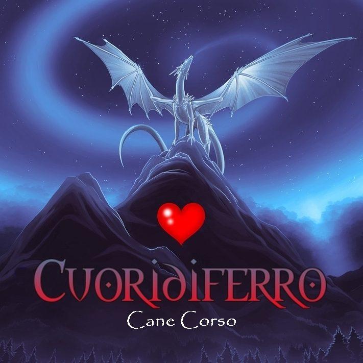draco-sfondi-nord-soffio-del-drago-d-inverno-fantasia-widescreen-hd-290383.jpg