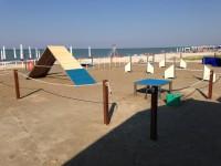 Scooby.Doo-Beach-Spiaggia-per-Cani-Senigallia-2.jpg