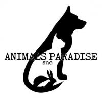 animalsparadise-cremazione-animali-forli.jpg