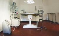 clinica3-veterinaria-san-carlo-brescia.jpg