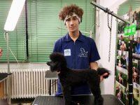 ACAD-scuola-di toelettatura-e-benessere-animale-2.jpg