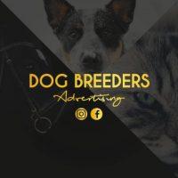 dog-breeders-advertising.jpeg