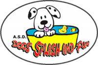 DOGS'_SPLASH_AND FUN_Centro_Cinofilo_e_Piscina_per_Cani.png