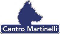 Centro_Martinelli.jpg