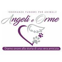 angeli-e-orme-onoranze-funebri-per-animali-e-cremazione-in-liguria.jpeg