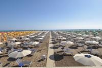 Beach-33-Spiaggia-per-Cani-Rimini-1.jpg