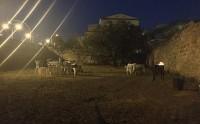 Wolf-Nature-Centro-di-Addestramento-ed-Educazione-Cinofila-Palermo-3.jpg