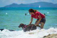 Tiliguerta_Dog_Beach.jpg