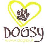DOGSY_Asilo_per_Cani_e_Dog_Sitting_Venezia.jpg