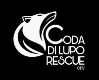 coda-di-lupo-rescue-odv.jpg