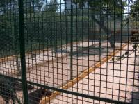 Allevamento-del-Levante-Pensione-per-cani-Bari-3.jpg