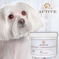 officine-cosmeceutiche-cosmetici-naturali-per-animali-1.jpg