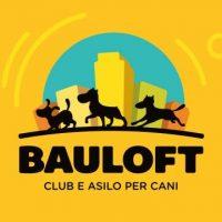 BauLoft_Club_e_Asilo_per_cani_Torino.JPG