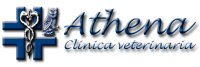 Athena_Clinica_Veterinaria_Torino.png
