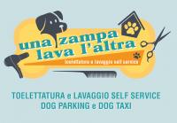 Una_zampa_lava_laltra_Dog_Taxi_Torino.png